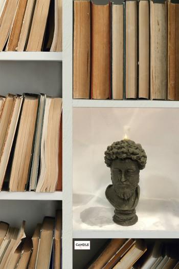 Marcus Aurelius in the library